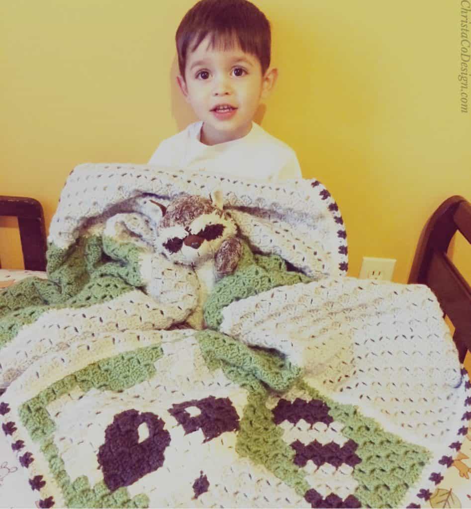 picture of grey and green toddler boy crochet c2c blanket raccoon pattern free