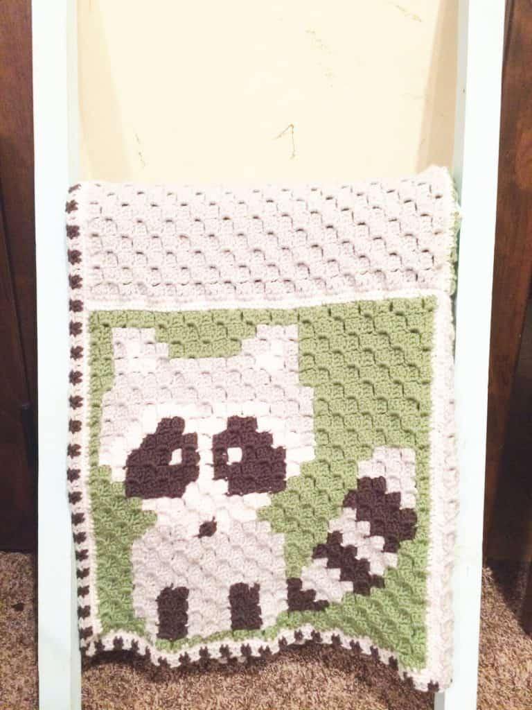 picture of hanging crochet blanket raccoon c2c