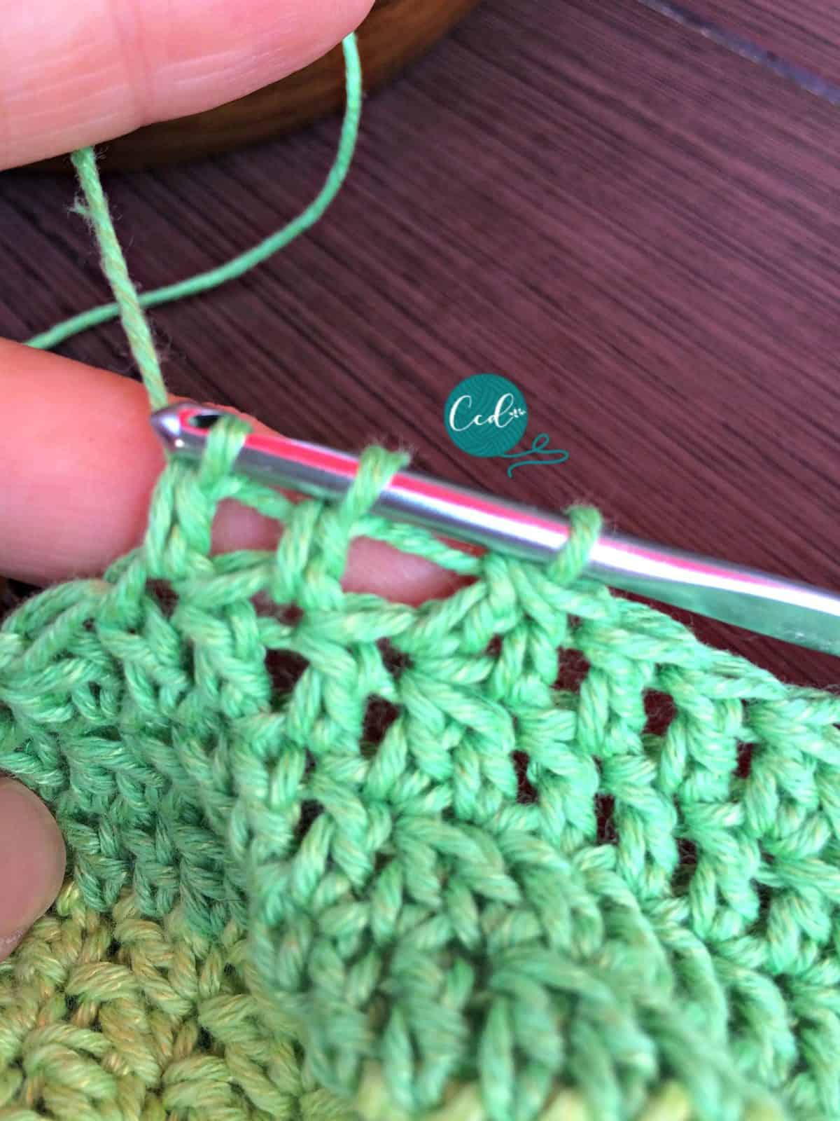 Two double crochets started on hook.