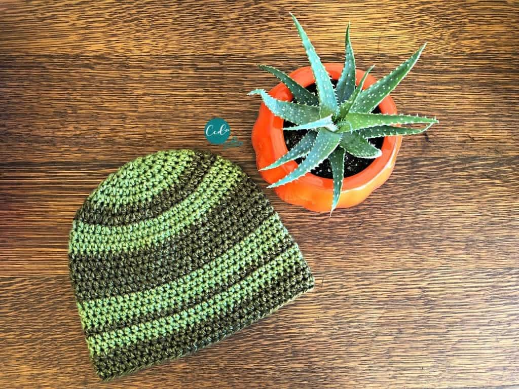 picture of green striped crochet beanie flat with succulent