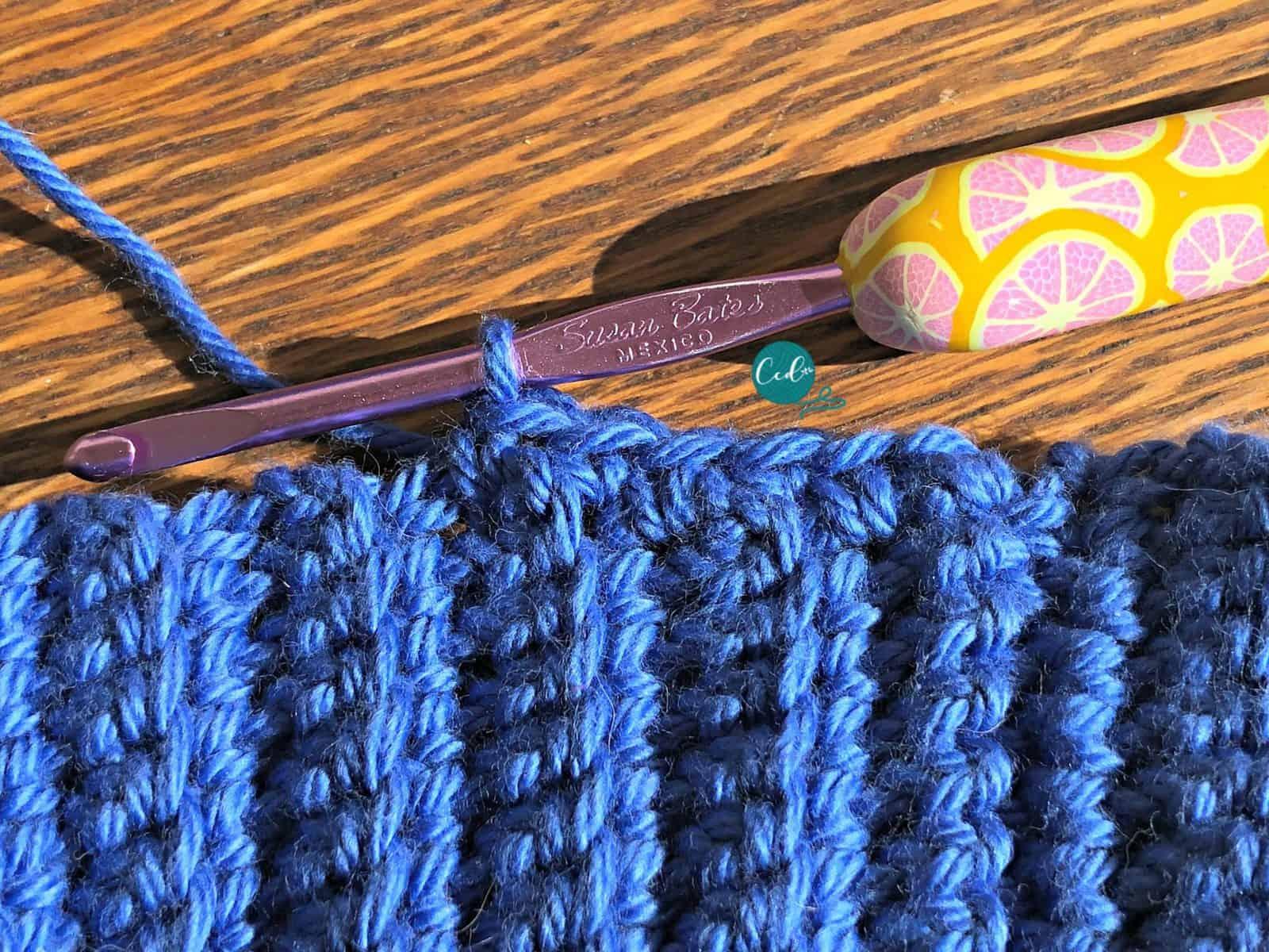 Single crochet around brim of hat.