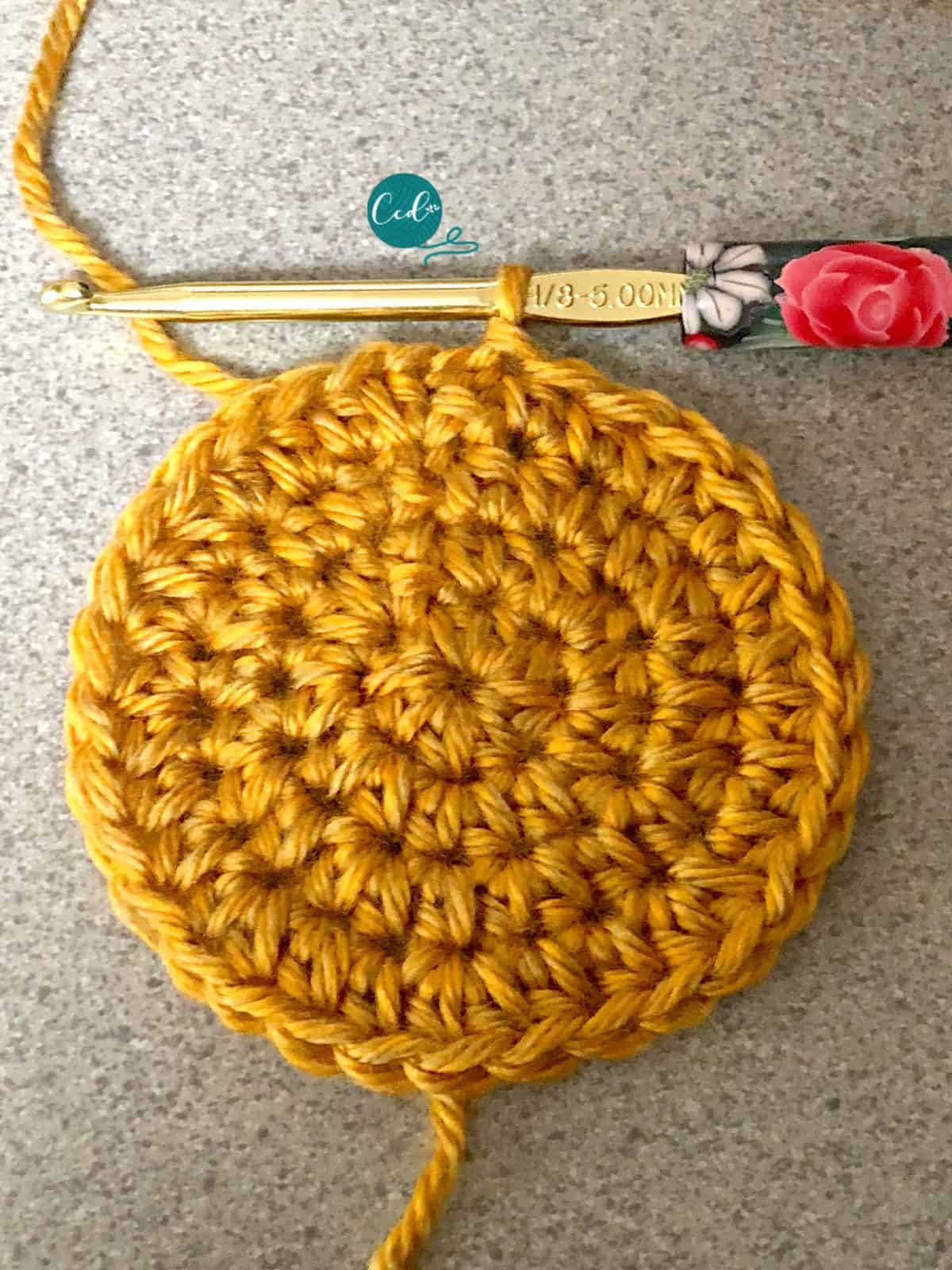 4th round on women's beret increases to 32 stitches.