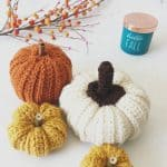 picture of crochet pumpkins in fall colors free pattern
