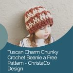 picture of pin image of chunky beanie with text free crochet pattern