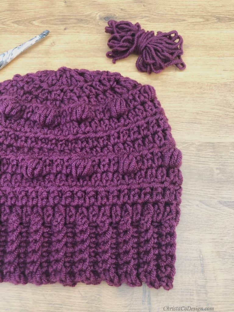 Purple hat with yarn and hook.