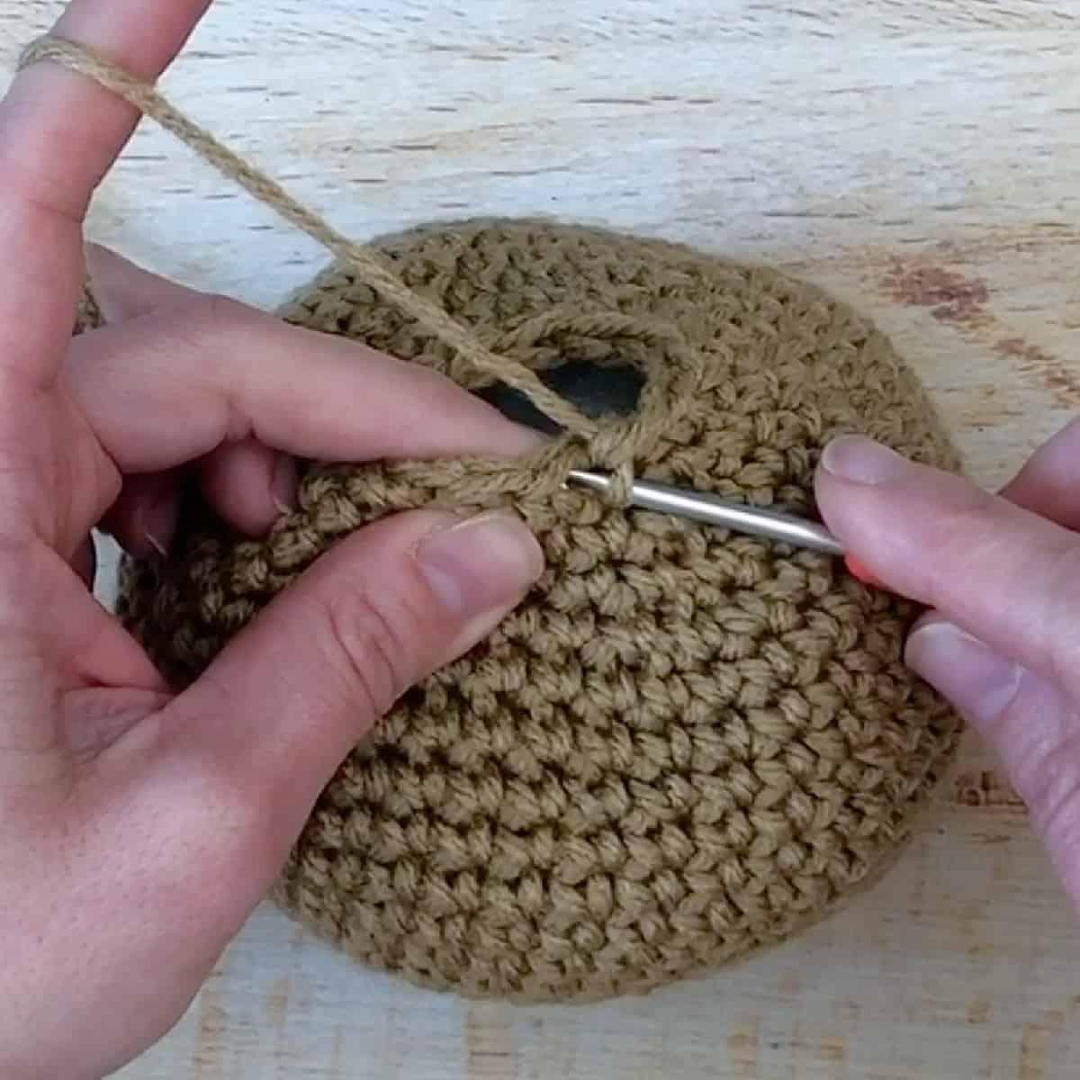 Bring hook under first stitch.