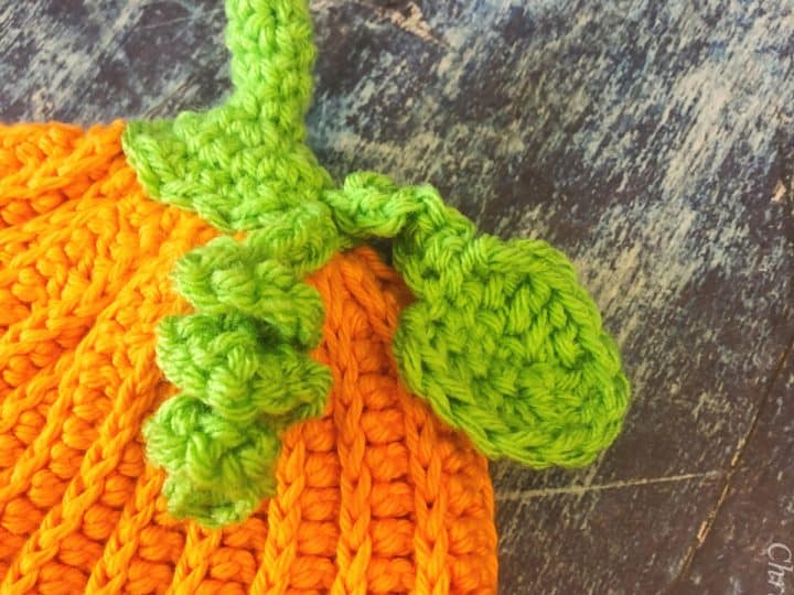 Close up of crochet hat topped with green stem, leaf and vine.